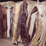 Libri alluvionati asciutti nel Forte Belvedere, Firenze
