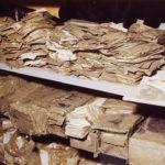 Schede catalografiche alluvionate nel Forte Belvedere, Firenze